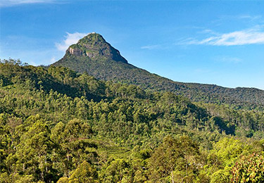 sri lanka best places to visit adams rock packages sri lanka